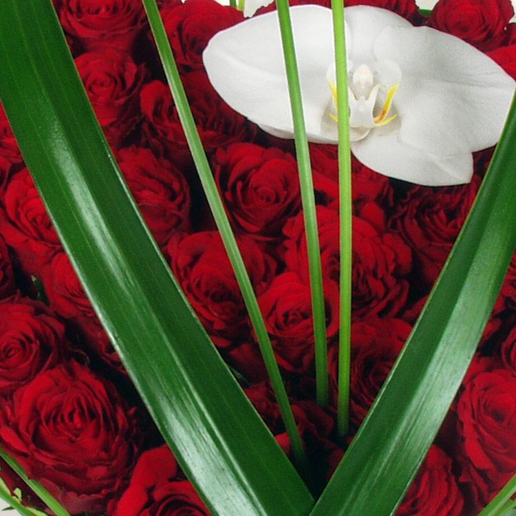 i-love-you-750-3757.jpg