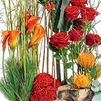 jardiniere-sacree-200-1591.jpg