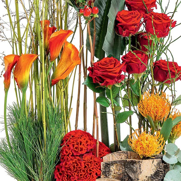jardiniere-sacree-750-1591.jpg