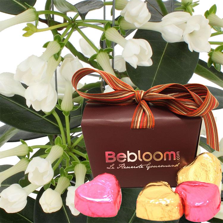 jasmin-de-madagascar-et-ses-chocolats-750-1281.jpg