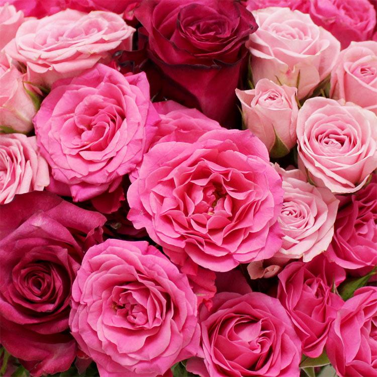 love-750-2265.jpg