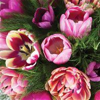 love-tulipes-et-son-vase-200-5859.jpg