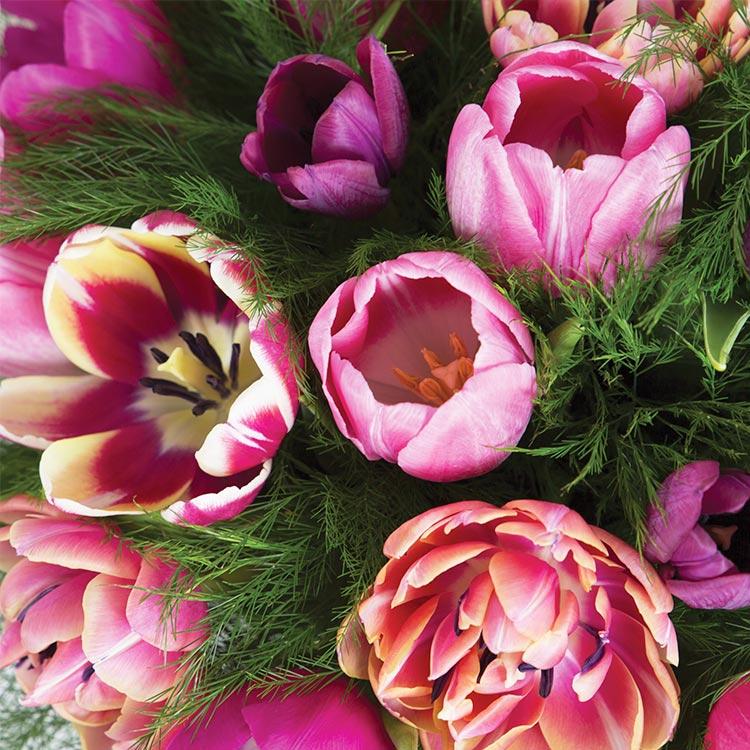 love-tulipes-xxl-et-son-vase-750-5865.jpg