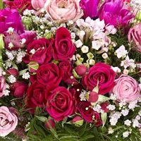 lovely-poesie-200-3906.jpg