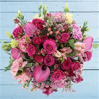 lovely-rose-et-son-ourson-200-3193.jpg