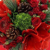 merry-christmas-xl-et-son-champagne-200-3655.jpg