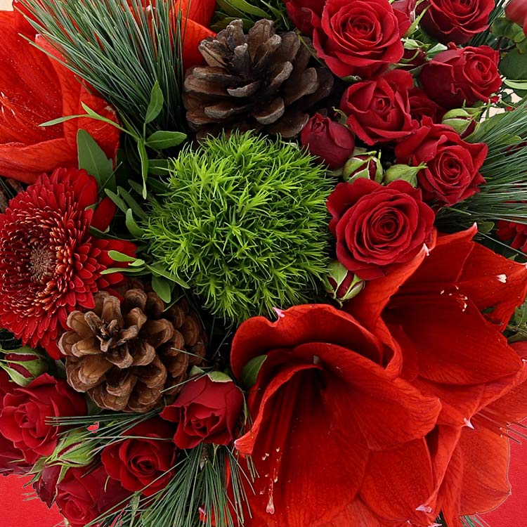 merry-christmas-xl-et-son-champagne-750-3655.jpg