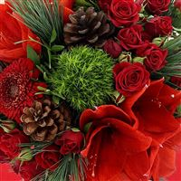 merry-christmas-xl-et-son-vase-200-3563.jpg