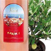 olivier-et-son-rose-saint-tropez-200-2436.jpg