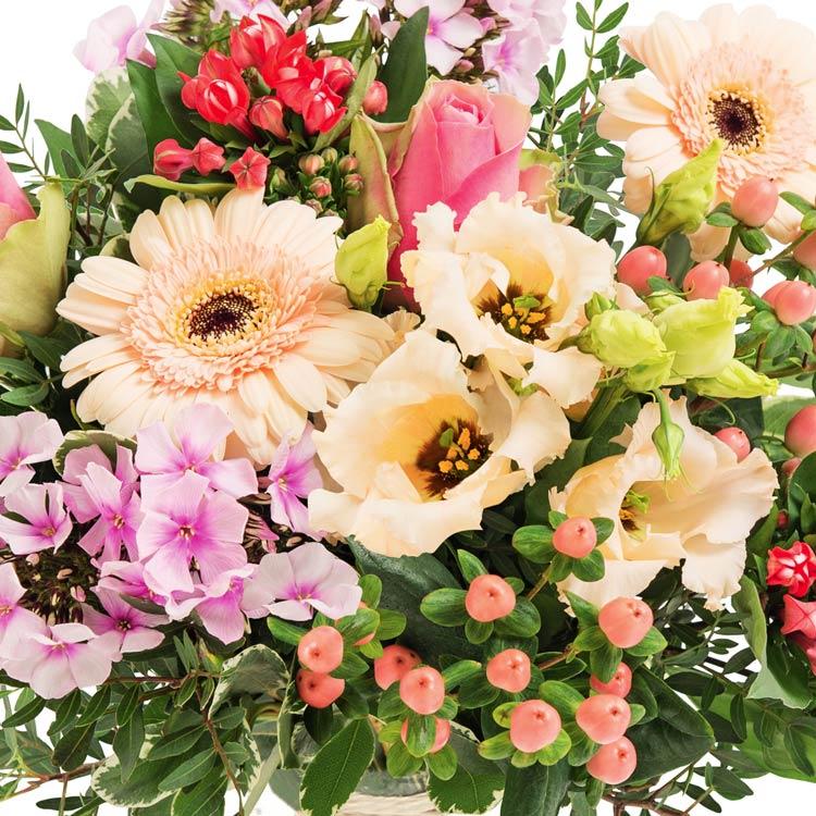 perroquet-et-son-vase-offert-200-2607.jpg