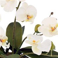 petite-orchidee-artificielle-200-2188.jpg