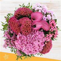 pink-cocktail-et-son-vase-200-5073.jpg