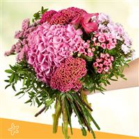 pink-cocktail-xxl-200-4971.jpg
