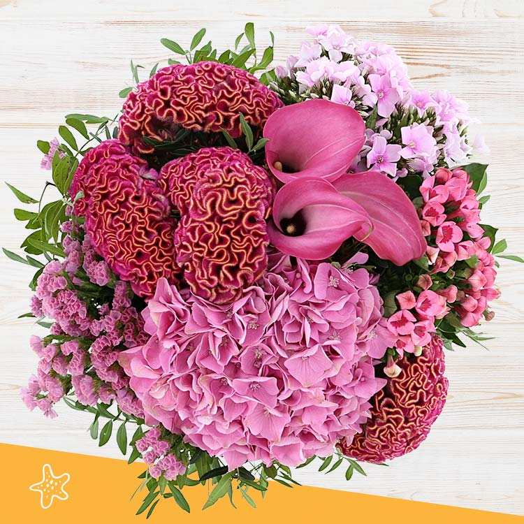 pink-cocktail-xxl-et-son-rose-lafage-750-5013.jpg