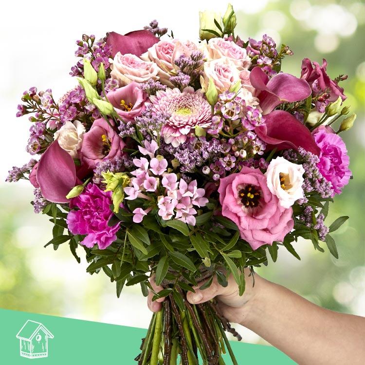 pink-vibes-xxl-200-4170.jpg