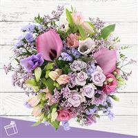 purple-love-200-3913.jpg