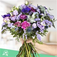 purple-vibes-xxl-200-4152.jpg