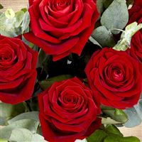 red-passion-et-son-vase-200-3818.jpg