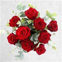 red-passion-et-son-vase-200-3819.jpg