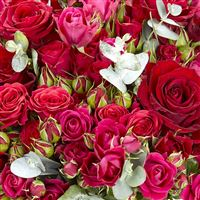 red-symphonie-et-son-vase-200-3729.jpg