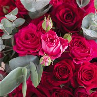 red-symphonie-et-son-vase-200-5467.jpg