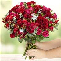 red-symphonie-xxl-200-4112.jpg