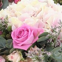 rock-and-rose-et-son-ourson-200-2641.jpg