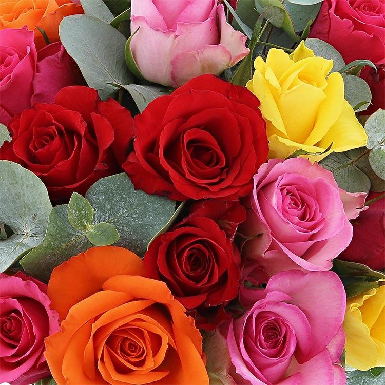 roses-et-chocolats-offerts-200-2309.jpg