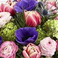 spring-vibes-xxl-200-4145.jpg