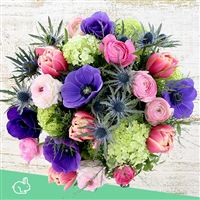 spring-vibes-xxl-200-4146.jpg