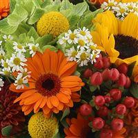 sunny-funky-et-son-vase-200-2774.jpg