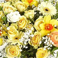 sunny-mamie-et-son-vase-200-3919.jpg