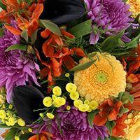 sunny-winter-et-son-vase-200-3376.jpg