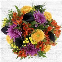 sunny-winter-et-son-vase-200-4003.jpg