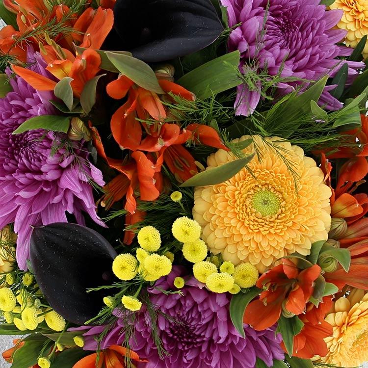 sunny-winter-et-son-vase-750-3376.jpg