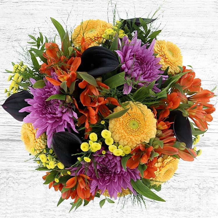 sunny-winter-et-son-vase-750-4003.jpg