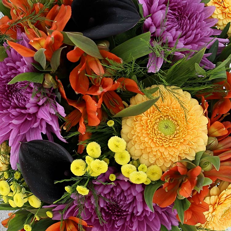 sunny-winter-xl-et-son-vase-750-3379.jpg