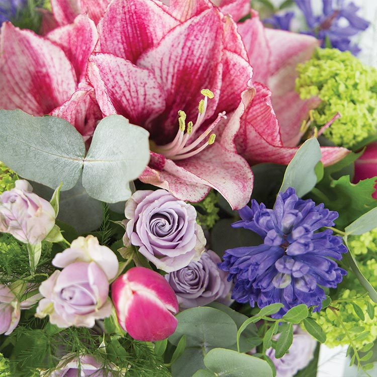 sweet-aurore-xxl-et-son-vase-750-5819.jpg