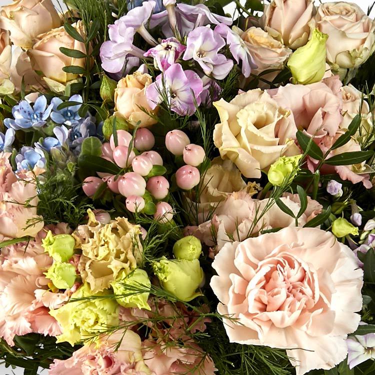sweet-melodie-et-son-vase-200-4239.jpg