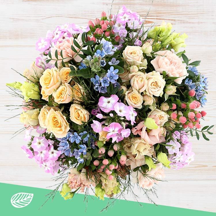sweet-melodie-xxl-et-son-vase-200-4236.jpg