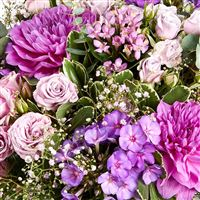 sweet-parme-xxl-et-son-vase-200-5081.jpg