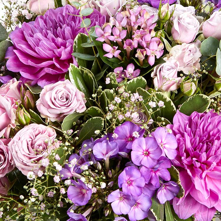 sweet-parme-xxl-et-son-vase-750-5081.jpg