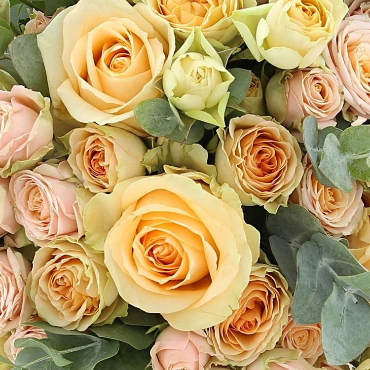 sweet-symphonie-et-son-vase-200-3247.jpg