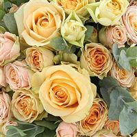 sweet-symphonie-xl-et-son-vase-200-3245.jpg