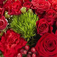 sweet-valentine-xl-200-3741.jpg