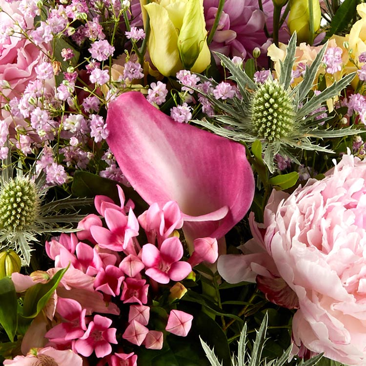 sweety-pink-xxl-et-son-mug-retro-750-4681.jpg