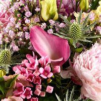 sweety-pink-xxl-et-son-rose-lafage-200-4694.jpg
