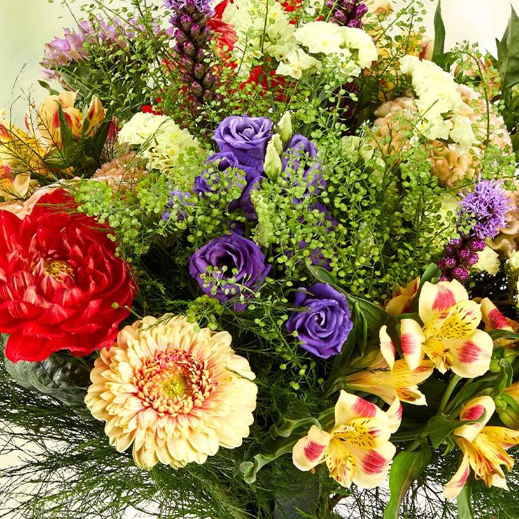 tendre-summer-et-son-vase-750-5093.jpg