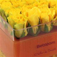 the-cube-jaune-200-614.jpg