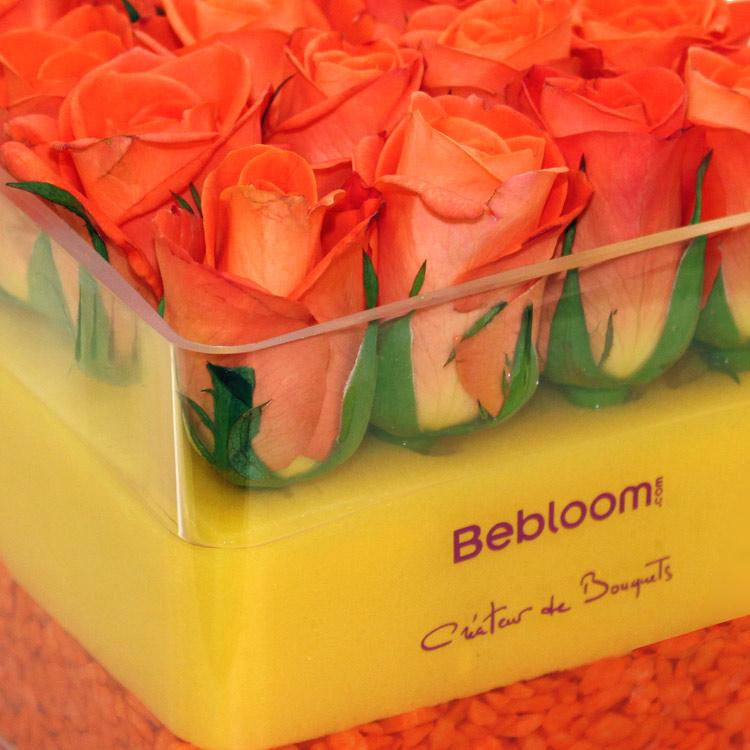 the-cube-orange-200-615.jpg